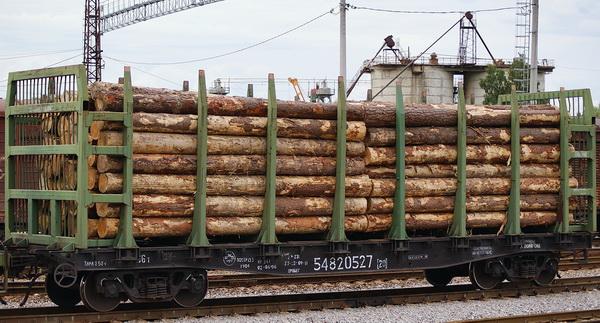 Закон о контроле за пунктами приема древесины снова принимают в Иркутской области